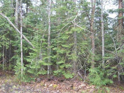 40 Acre Recreation Nestoria 1119178 : Covington : Baraga County : Michigan