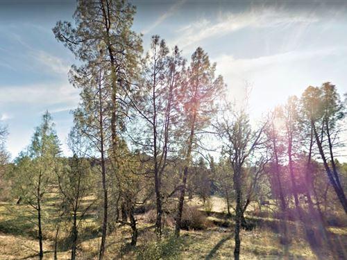 9.8 Acres in Bella Vista, CA : Bella Vista : Shasta County : California