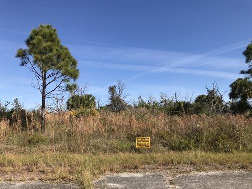 Two Adjacent Oversized Lots : North Port : Sarasota County : Florida