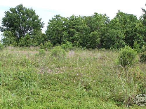 Guaranteed 1.01 Acre Piece of Land : Bluff Dale : Erath County : Texas