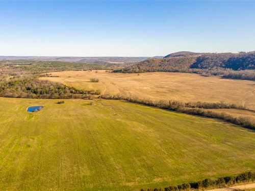 This 500 Acre Property, Wooded : Pleasant Grove : Stone County : Arkansas