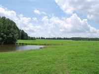 340 Acres Home, Pasture, Plan : Clinton : Van Buren County : Arkansas