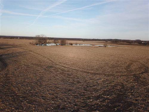 220 Acres of Tillable Farmland : Altamont : Labette County : Kansas