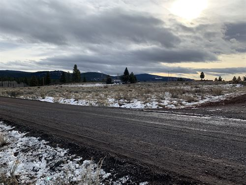 .48 Stunning Acres in Oregon Shore : Chiloquin : Klamath County : Oregon