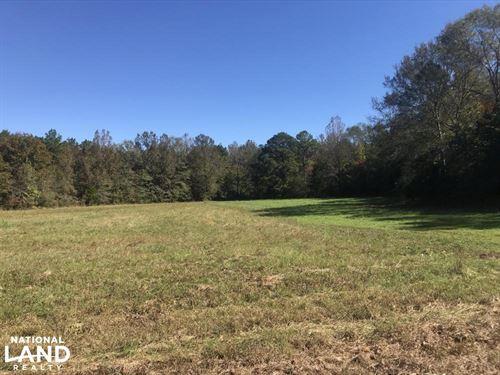 County Road 33 Hunting & Timber Inv : Hamilton : Marion County : Alabama