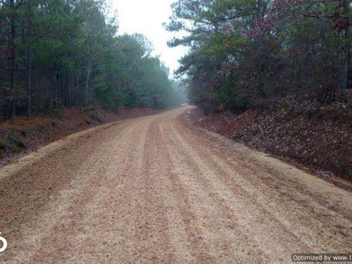 Prime Hunting Land : Kosciusko : Attala County : Mississippi