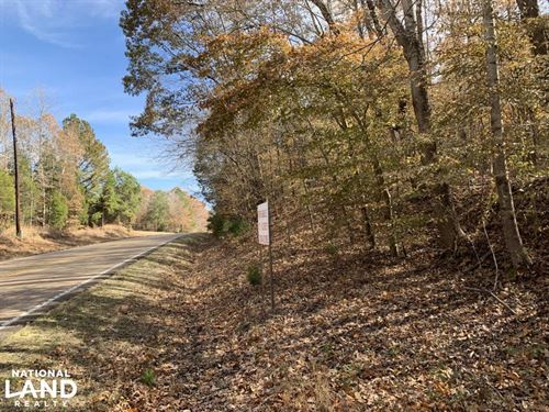 Wooded Hunting/Homesite Tract : Reagan : Henderson County : Tennessee