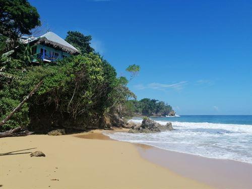 Well Established Bocas Del Toro : Mimitimbi Bluff : Panama