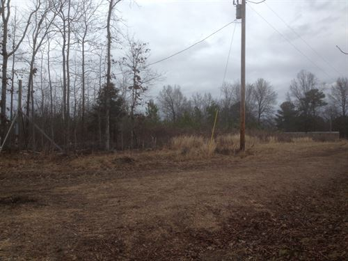 Land to be Developed Hohenwald : Hohenwald : Lewis County : Tennessee