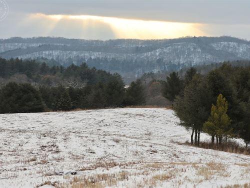 Recreational Land Richland County : Cazenovia : Richland County : Wisconsin