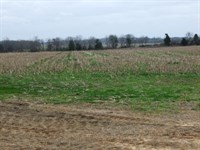 Wendell Farm, Allenville, 1115 ac : Faunsdale : Marengo County : Alabama