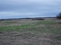 Wendell Farm, Webb, 849 ac : Demopolis : Marengo County : Alabama