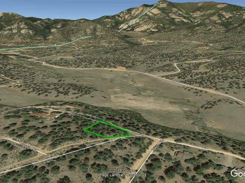 Jefferson County CO Camping Lot : Pine : Jefferson County : Colorado