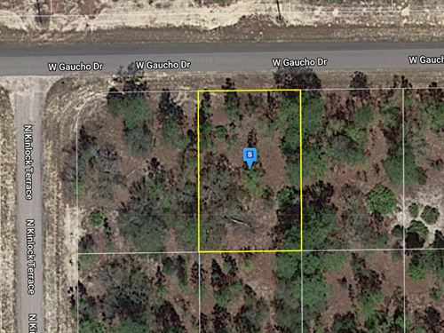 .23 Acre in Citrus County, FL : Citrus Springs : Citrus County : Florida