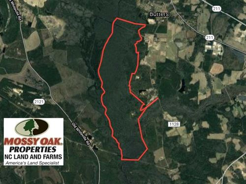 1,226 Acres of Hunting Land For Sa : Butters : Robeson County : North Carolina