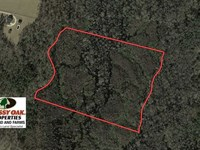 20 Acres of Hunting Land For Sale : Fairmont : Robeson County : North Carolina