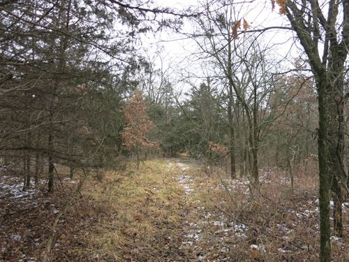 Hunting Land in Gentry County : Albany : Gentry County : Missouri