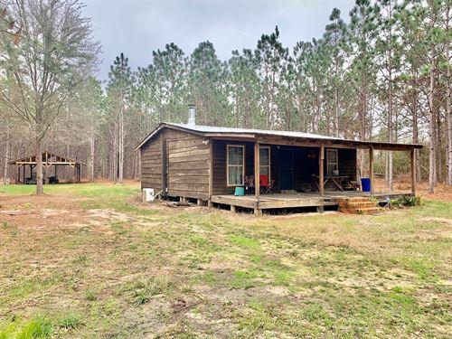 Cabin 10.8 Acres, Black, Alabama : Hartford : Geneva County : Alabama