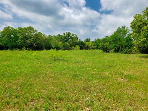 47.15 ac S of Austin With Financing : Dale : Caldwell County : Texas