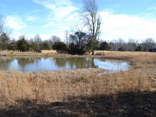 6.5 Acres on Lick Fork Rd, Wit : Witts Springs : Searcy County : Arkansas