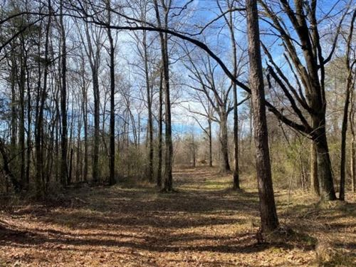 196.82 Acres In Madison County : Camden : Madison County : Mississippi