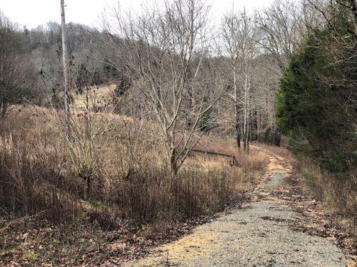 Acreage / Land Tn, Utilities, Pond : Clifton : Wayne County : Tennessee