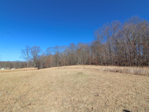 Cottage Hill Rd, 6 Acres : Nashport : Muskingum County : Ohio