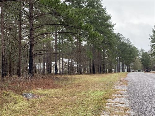 Vacant Land & 23 Residential Lots : Vienna : Dooly County : Georgia