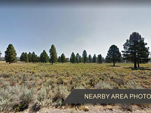 3.03 Acres Land in Chiloquin OR : Chiloquin : Klamath County : Oregon
