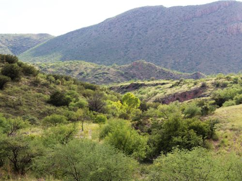 Alamo Canyon Ranch : Tubac : Santa Cruz County : Arizona