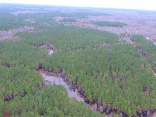 Big Swamp North : Lumberton : Robeson County : North Carolina