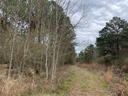 8.4 Commercial Acres In Jones Count : Laurel : Jones County : Mississippi