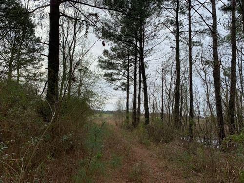 28.2 Commercial Acres In Jones Coun : Laurel : Jones County : Mississippi