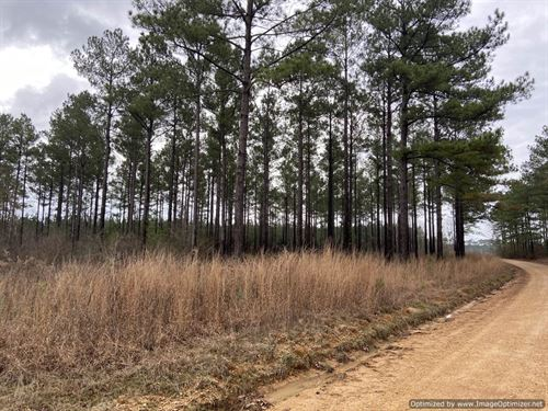 12Ac of Peaceful Serenity : Wess : Lincoln County : Mississippi