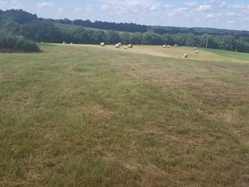 Land For Sale in Stone County, MO : Billings : Stone County : Missouri