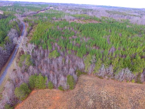 Wonderful Opportunity For Timber : Nathalie : Halifax County : Virginia