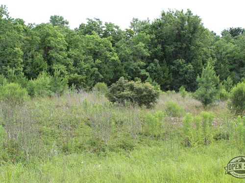 Perfect Unrestricted Land : Sweeny : Brazoria County : Texas