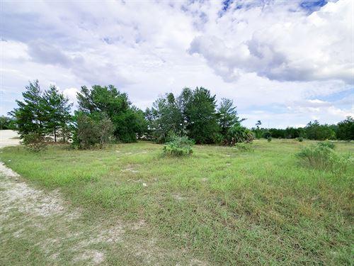 Large Rural Lot to Develop : Pomona Park : Putnam County : Florida