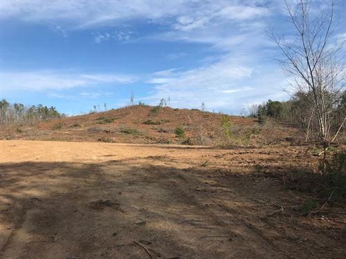 30 Acres Near Cedartown GA : Spring Garden : Cherokee County : Alabama