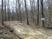 Woodland Ridge Lot 8 : Dunlap : Sequatchie County : Tennessee
