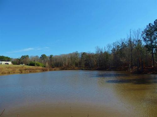 Farm With Commercial Building : Greensboro : Greene County : Georgia