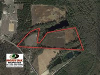 20 Acres of Farm And Hunting Land : Rowland : Robeson County : North Carolina