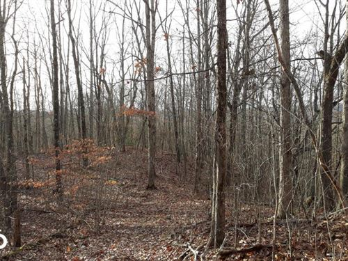 Private Forested Home Site Near Wat : Rockwood : Roane County : Tennessee