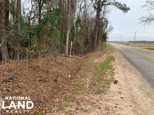 Colony Road Homesites, Hunting : Sumter : South Carolina