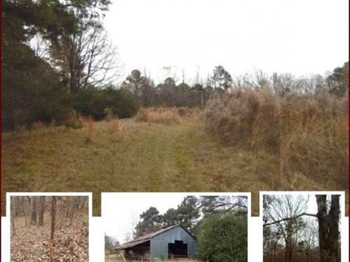 40 Acres In Simpson County In Braxt : Braxton : Simpson County : Mississippi