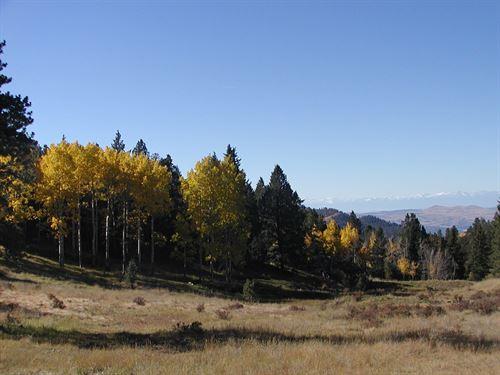 240 Acre Colorado Ranch Borders Blm : Cripple Creek : Teller County : Colorado