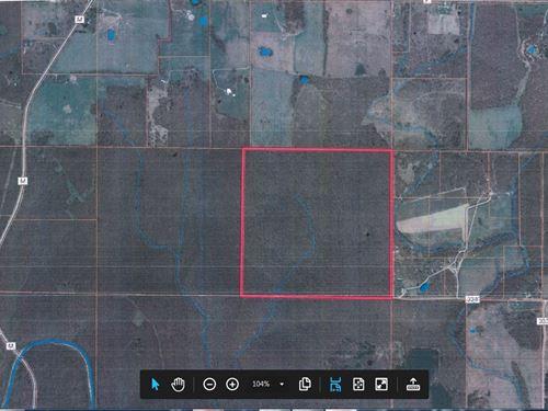 Wooded Land One Pond, County Road : Koshkonong : Oregon County : Missouri