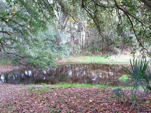 11.62 Acres Home & Pond : Plant City : Hillsborough County : Florida