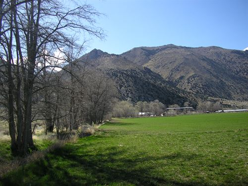 200 Acres Water Righted Ranch : Wellington : Lyon County : Nevada