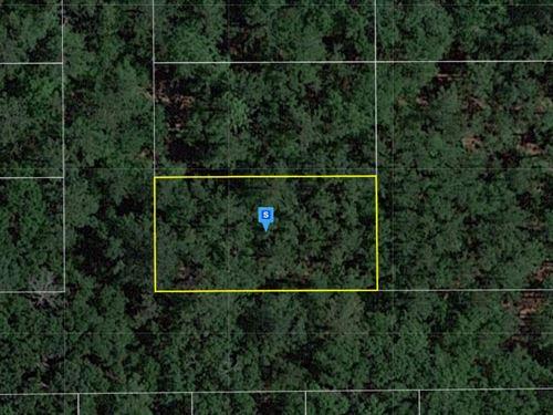.25 Acre in Suwannee County, FL : Live Oak : Suwannee County : Florida